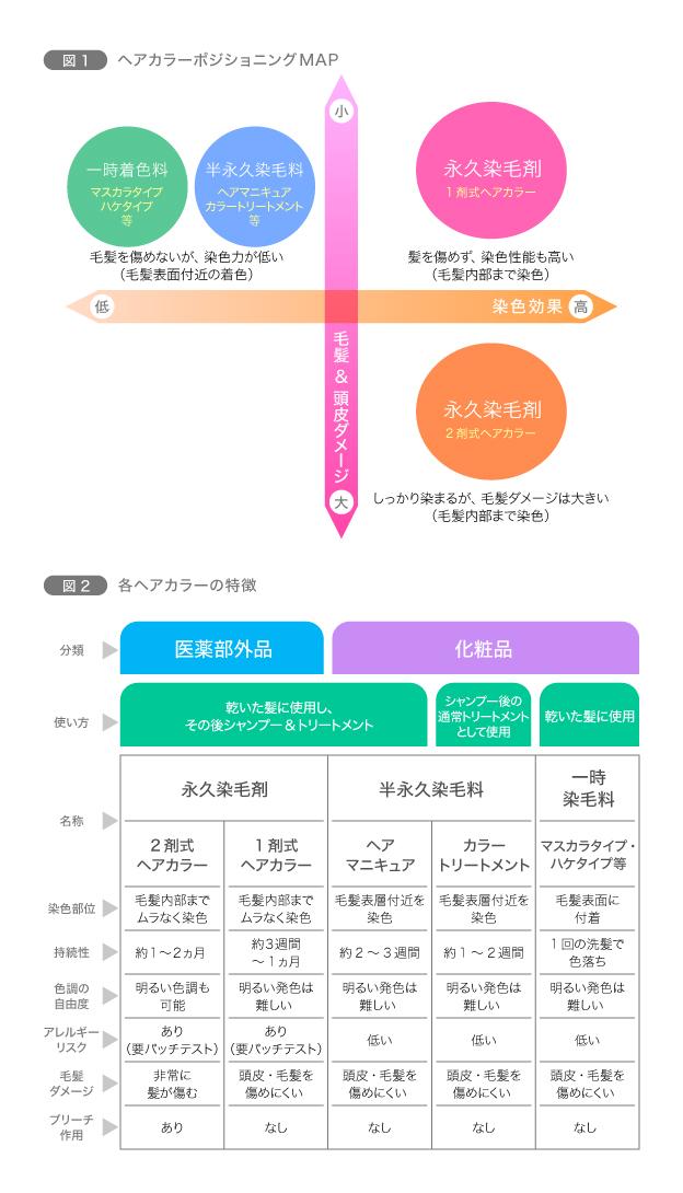 図1 ヘアカラーポジショニングMAP/図2 各ヘアカラーの特徴