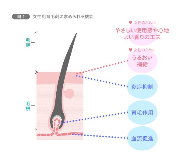 図1 女性用育毛剤に求められる機能