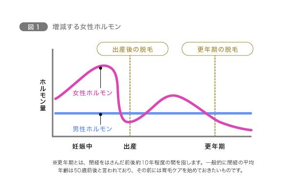図1 増減する女性ホルモン